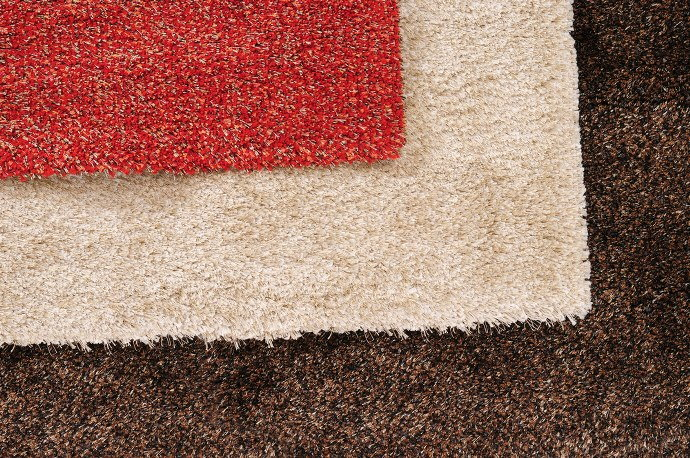 7 Carpet Cleaning Facts You Don T Want To Ignore Anymore