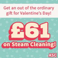Get Steam Cleaning Only For £61