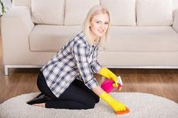 Professional One off Cleaners in Osidge, N14