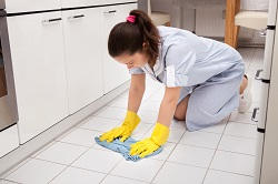NW5 Apartment Cleaning in Dartmouth Park